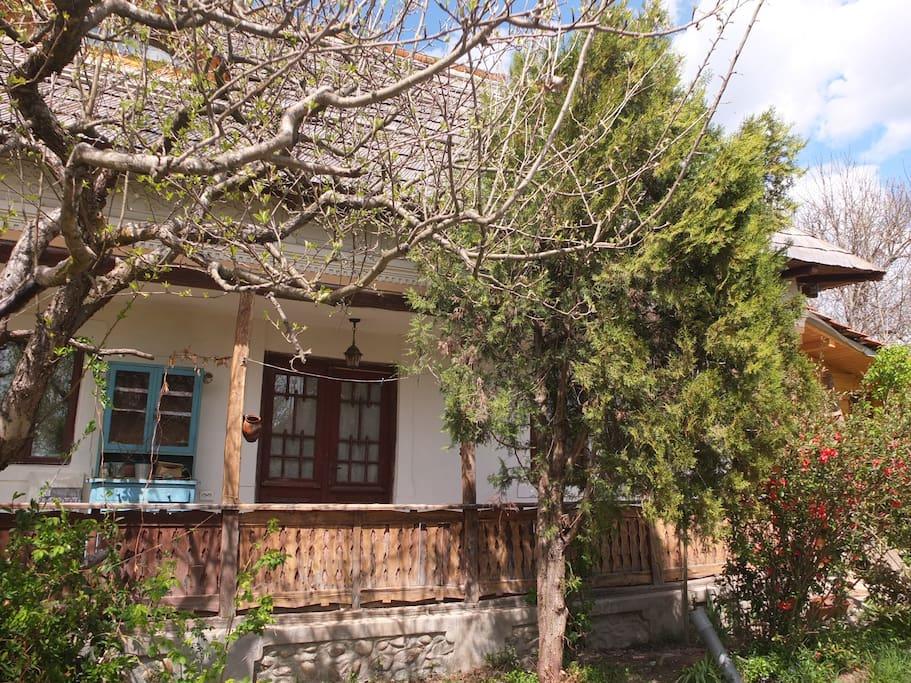 cazare casa traditionala valsanesti