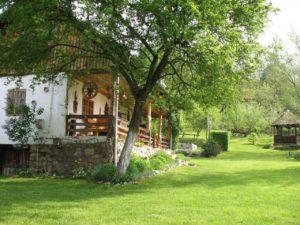 casa traditionala stoenesti