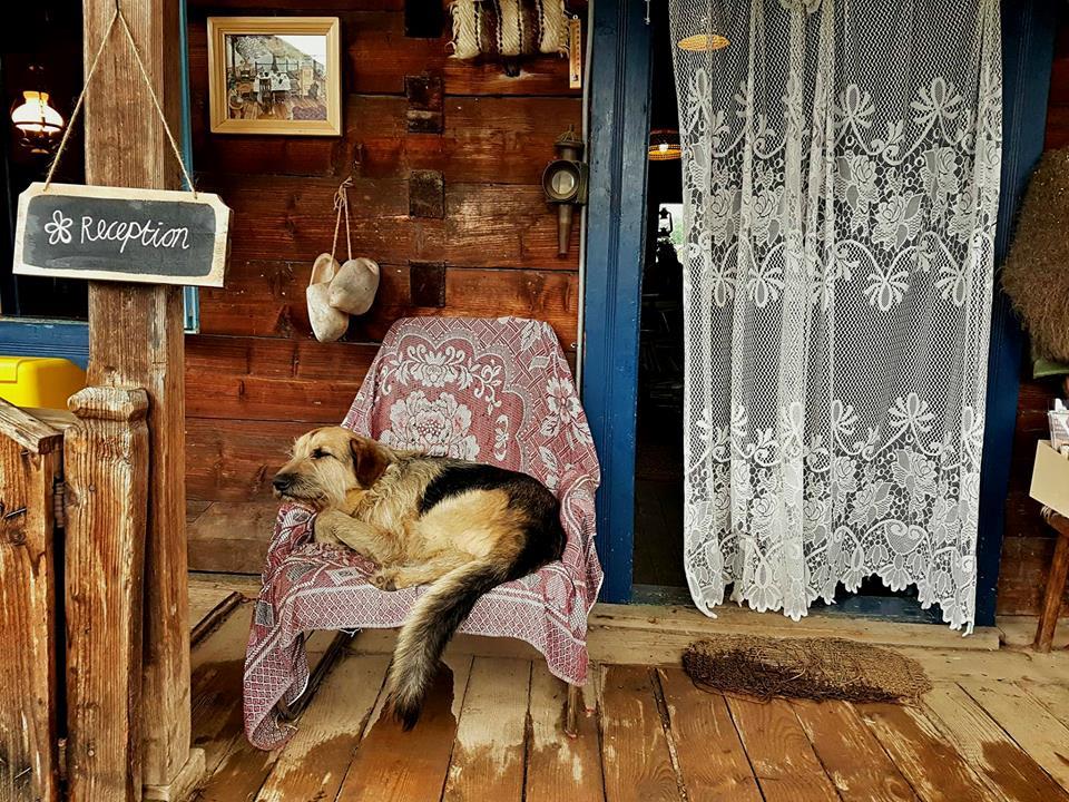 cazare case traditionale maramures