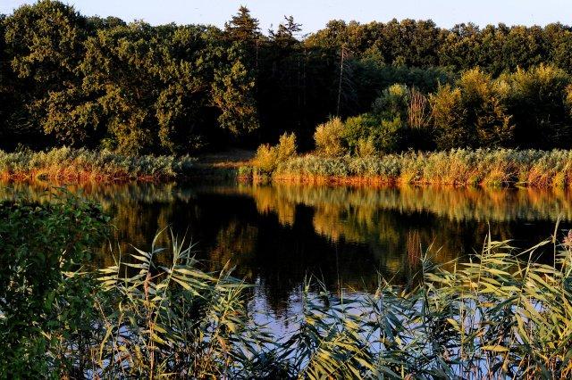 Sit natura 2000