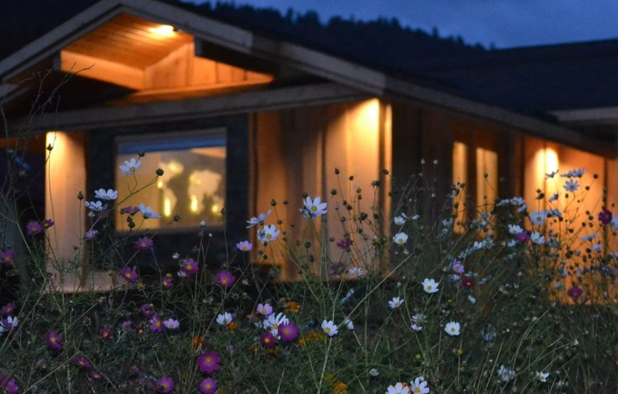 Alpin Lodge Azuga