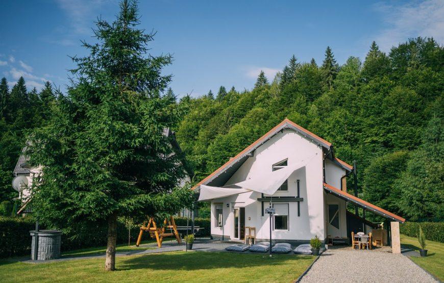 guesthouse transylvania
