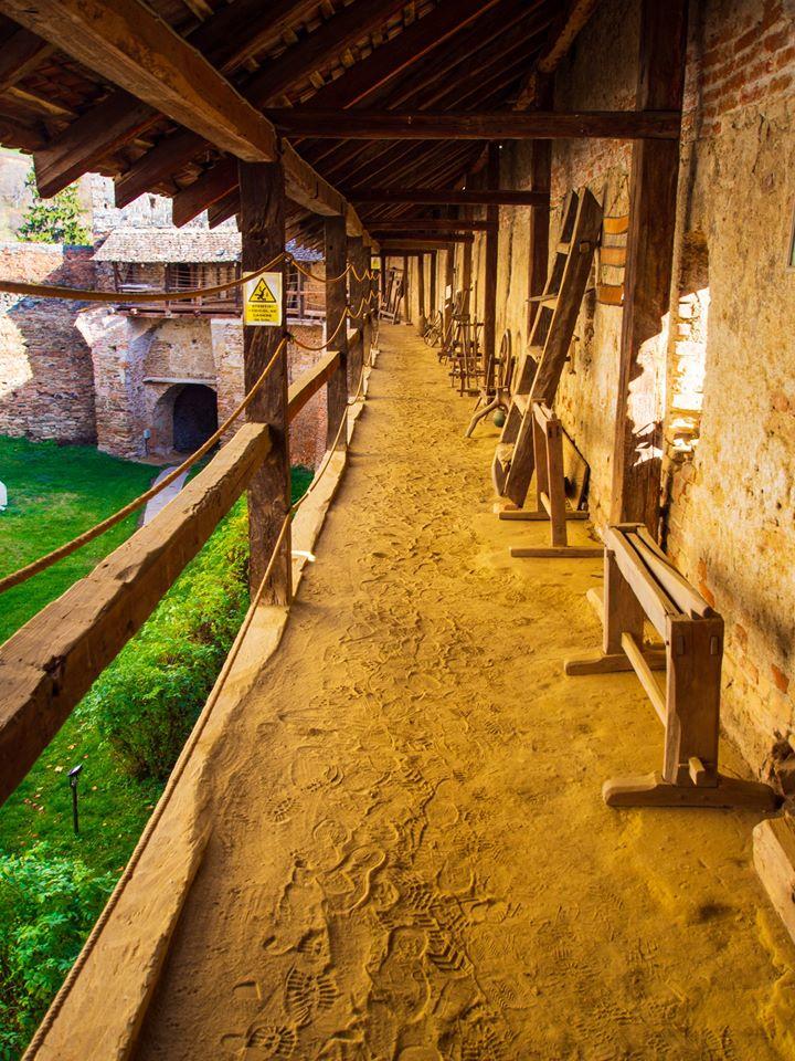 castelul mosna
