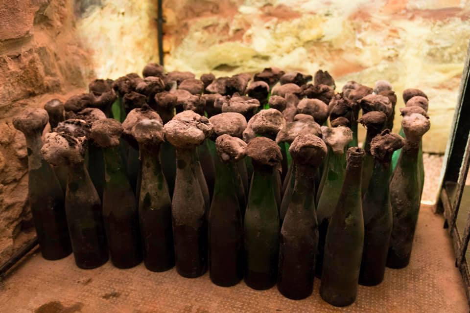 degustari vin alba