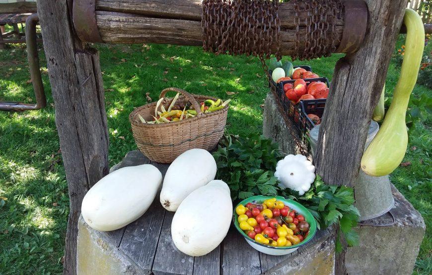 farm to table transilvania