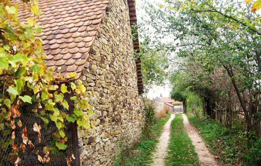 vacanta traditionala transilvania