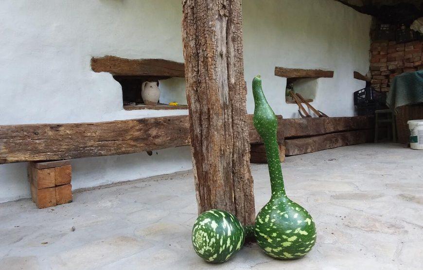 legume bio transilvania